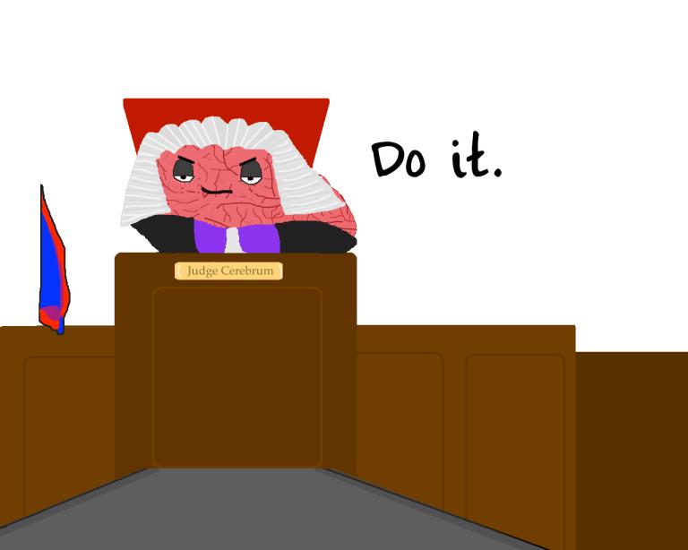 judgebrainy 4 copy 2