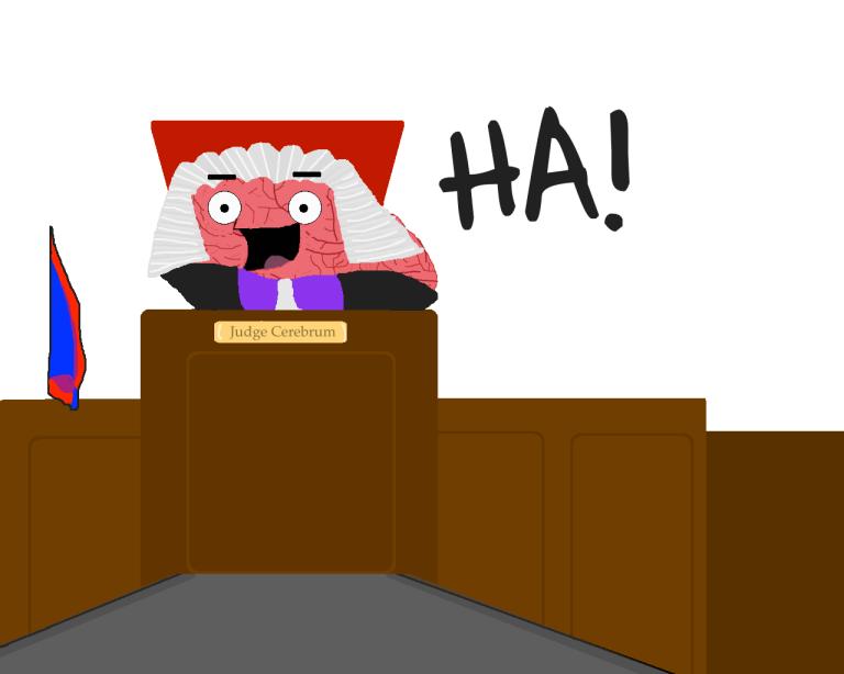 judgebrainy 4 copy 6