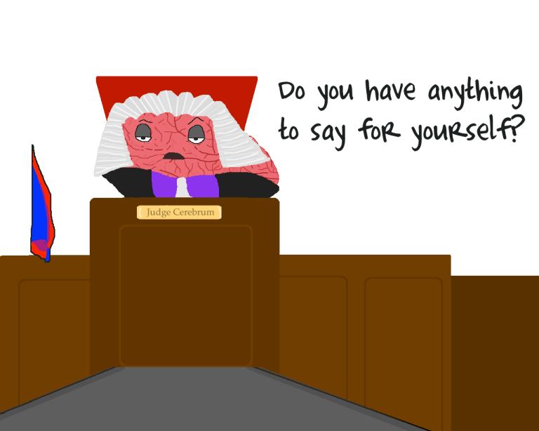 judgebrainy 4